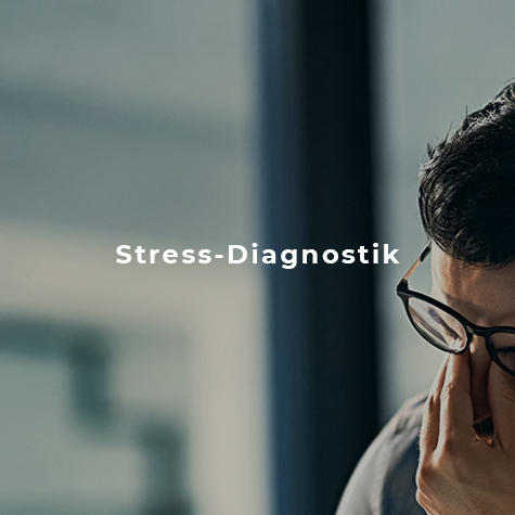 Stress Diagnostik