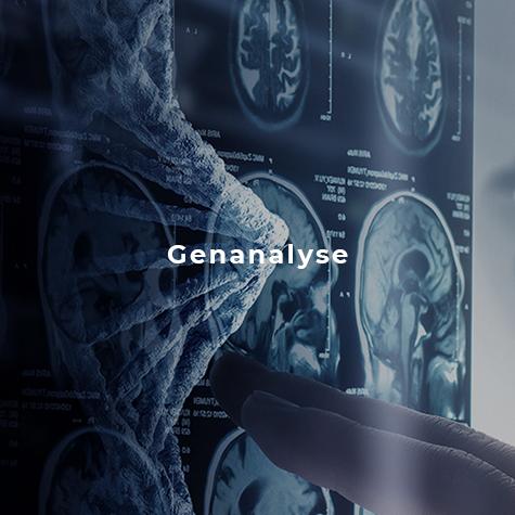 Diagnostik, Genanalyse