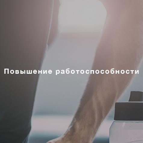 DZIP_Leistungen_Leistungsverbesserung